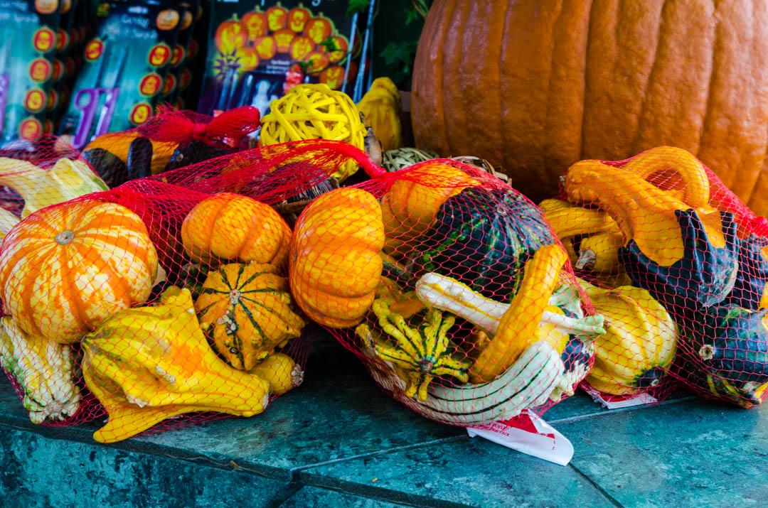 Cukierek czy psikus hallowen w usa (11)
