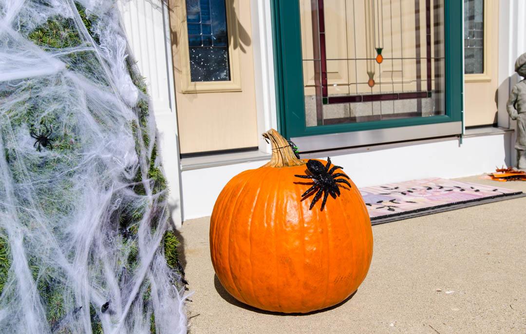 Cukierek czy psikus hallowen w usa (23)