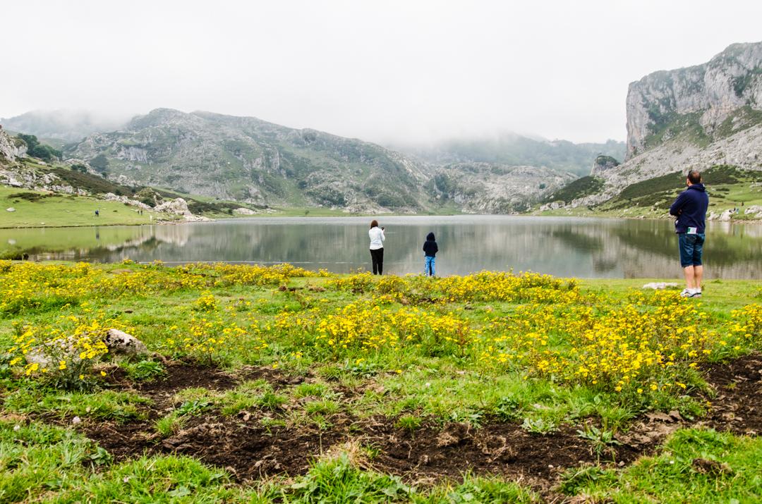 Picos de Europa - zielona strona Hiszpanii (26)