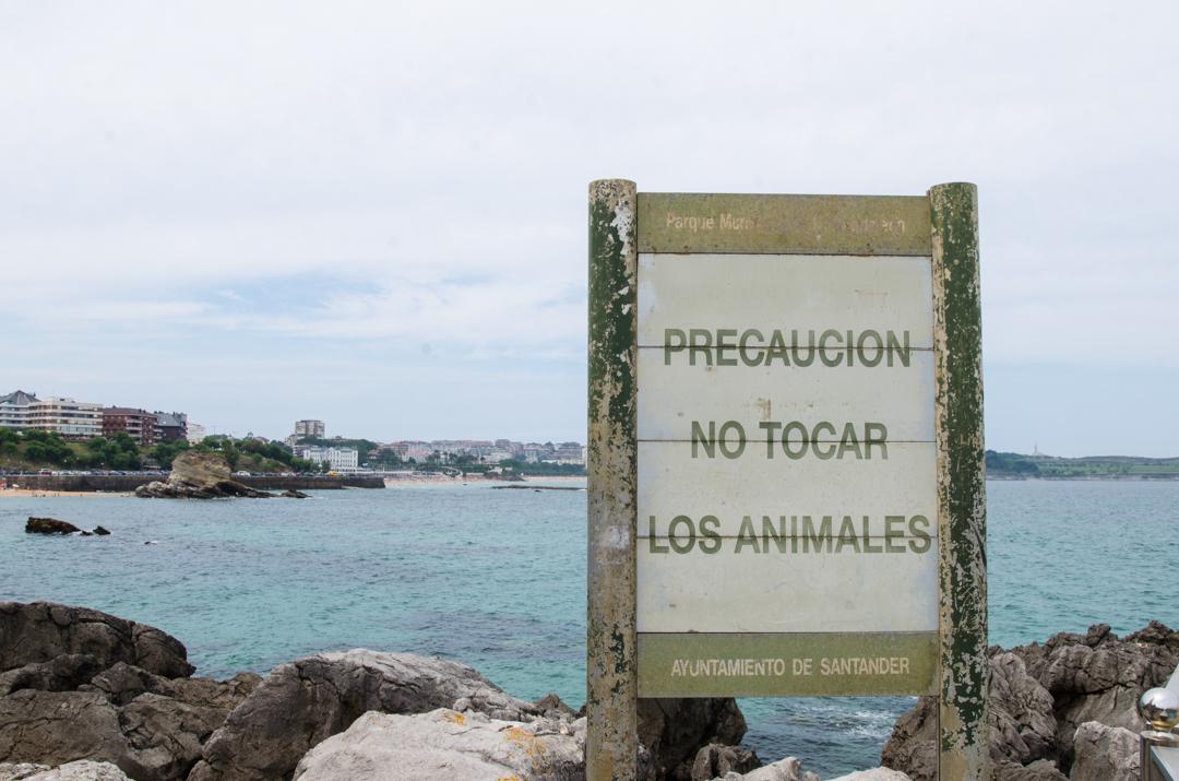 Opowieści ze stolicy Kantabrii - Santander (36)
