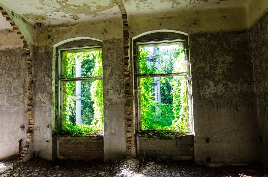Opuszczony szpital dla chorych na gruźlicę w Beelitz (19)