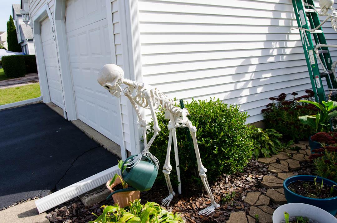Cukierek czy psikus hallowen w usa (58)