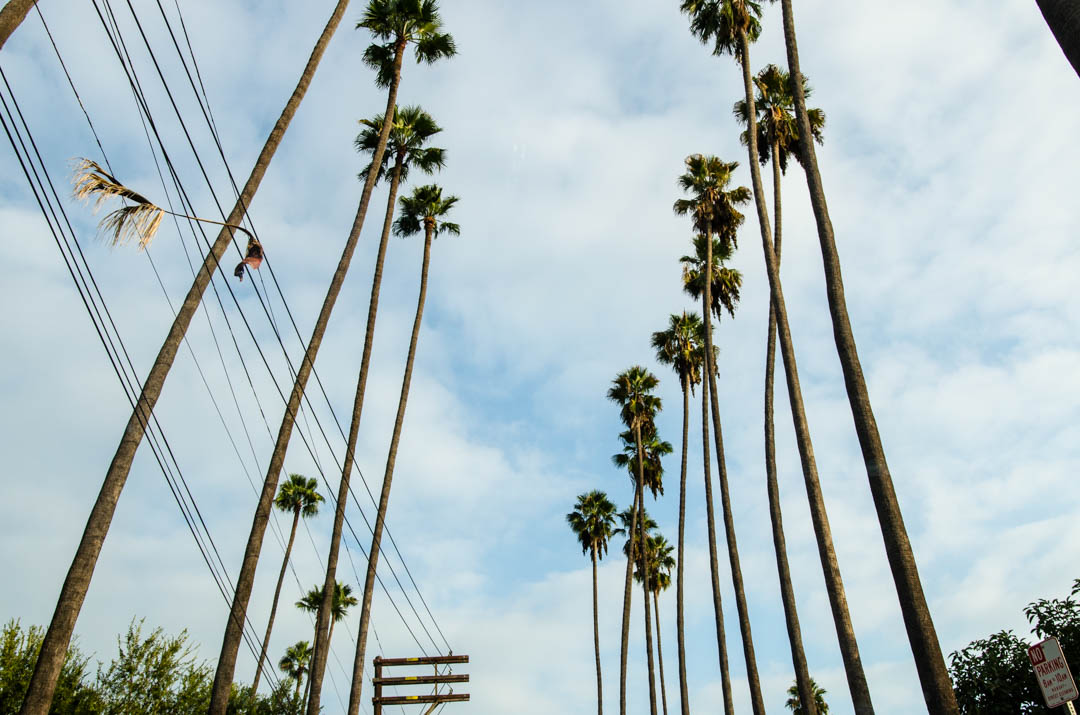 Czy Los Angeles jest przereklamowane (25)