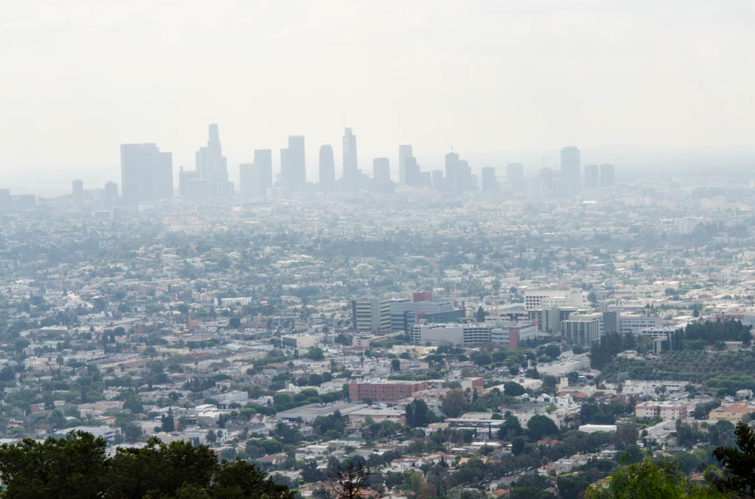 Czy Los Angeles jest przereklamowane (28)