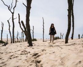 ruchome wydmy w Słowińskim Parku Narodowym